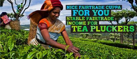 fairtradetea